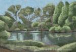 Morton Arboretum #2